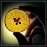 Lemonka