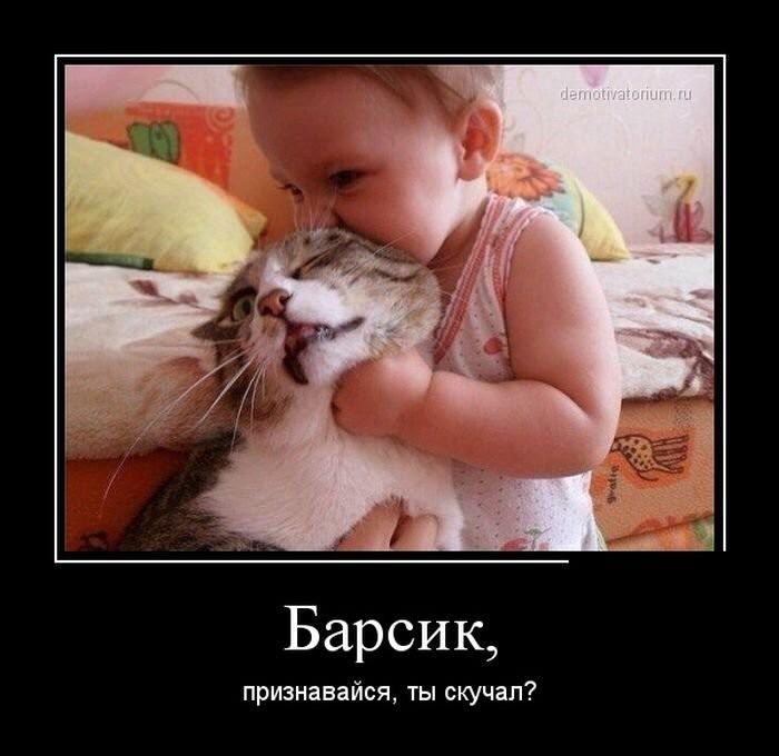 112345649_image.jpg.23ecfea6afcad51f90f59ea7c520f59d.jpg