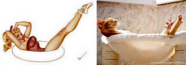 cats-vintage-pin-up-girls-vinegret-15.jpg