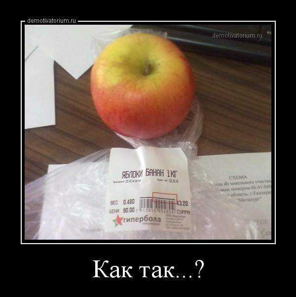 demotivatorium_ru_kak_tak_61068.jpg
