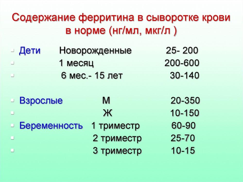 slide-6.jpg