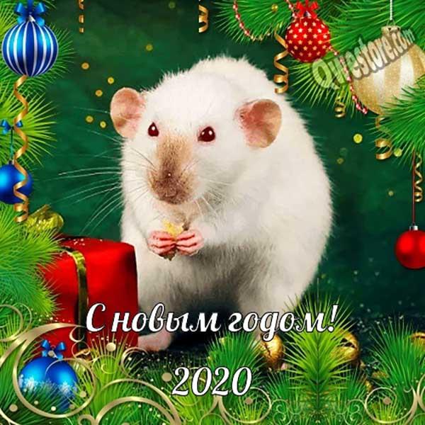Novogodnie-kartinki-s-Novym-Godom-2020-7-1.jpg