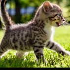 Тигра саблезубая