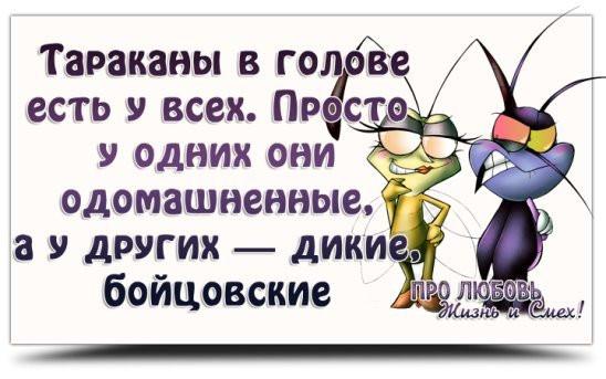 изображение__2020-01-19_08-40-28.jpg
