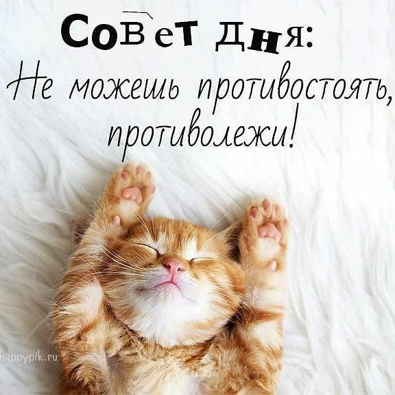image_1584190713136.jpeg