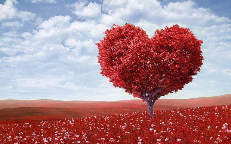 heart-shape-1714807__480.jpg