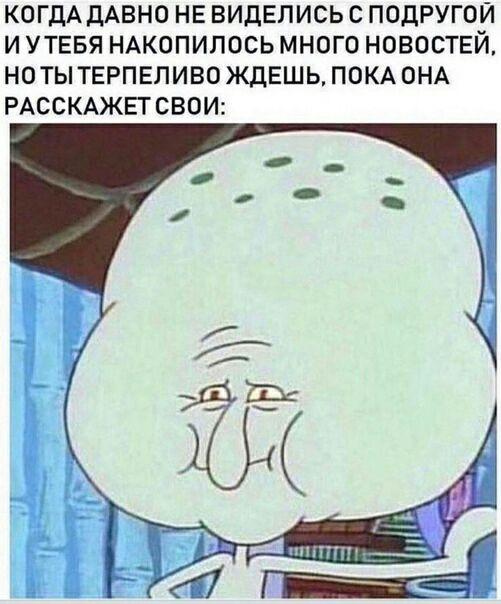 555220.jpg