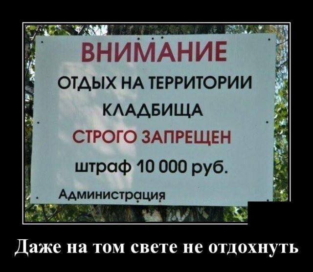1594064054_0007.jpg