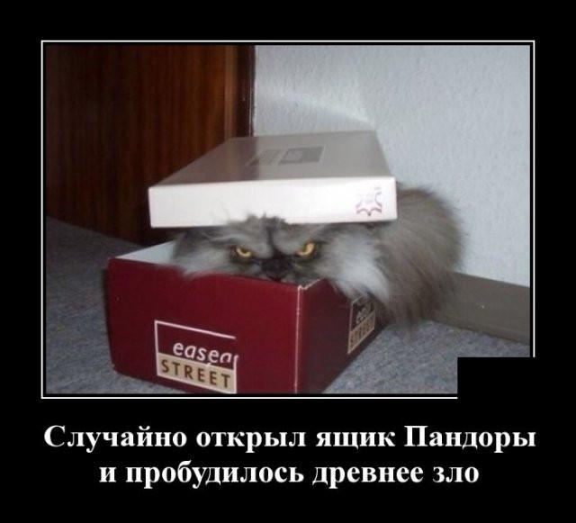 1594273666_0009.jpg