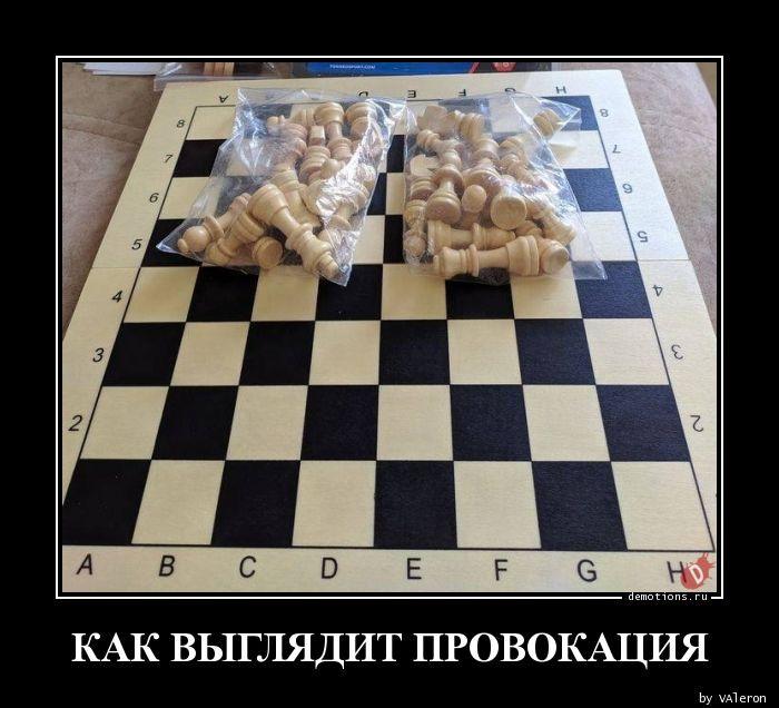 1594323505_0019.jpg