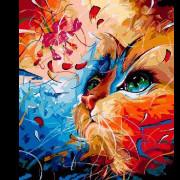 Разноцветная Коша