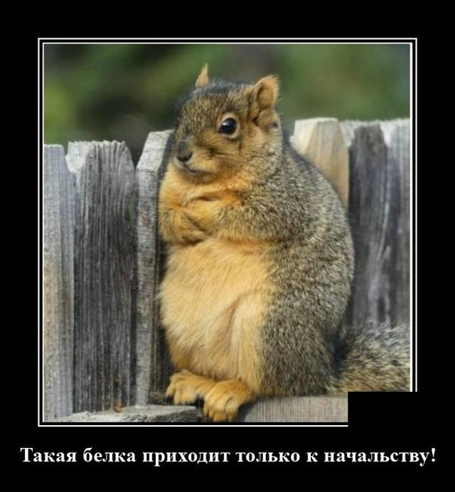 1599776312_0007.jpg