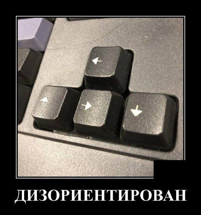 1604831750_19.jpg