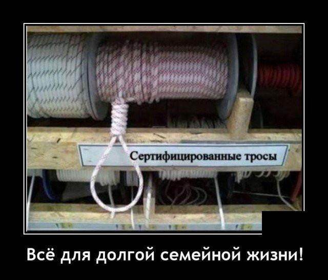 1605125019_8.jpg