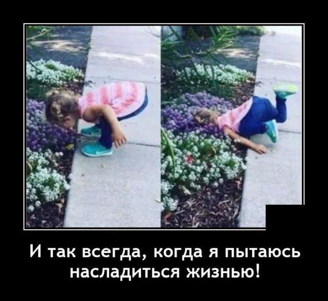 1605125073_18.jpg