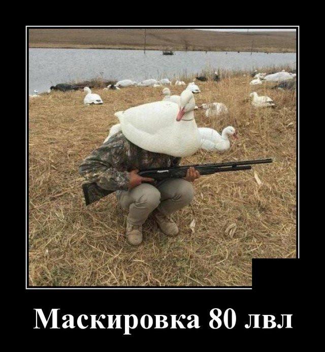 1607033992_7.jpg