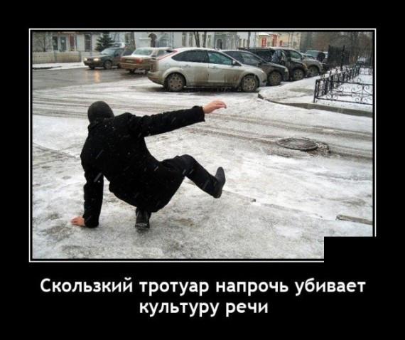 1610655375_206629_16_trinixy_ru.jpg