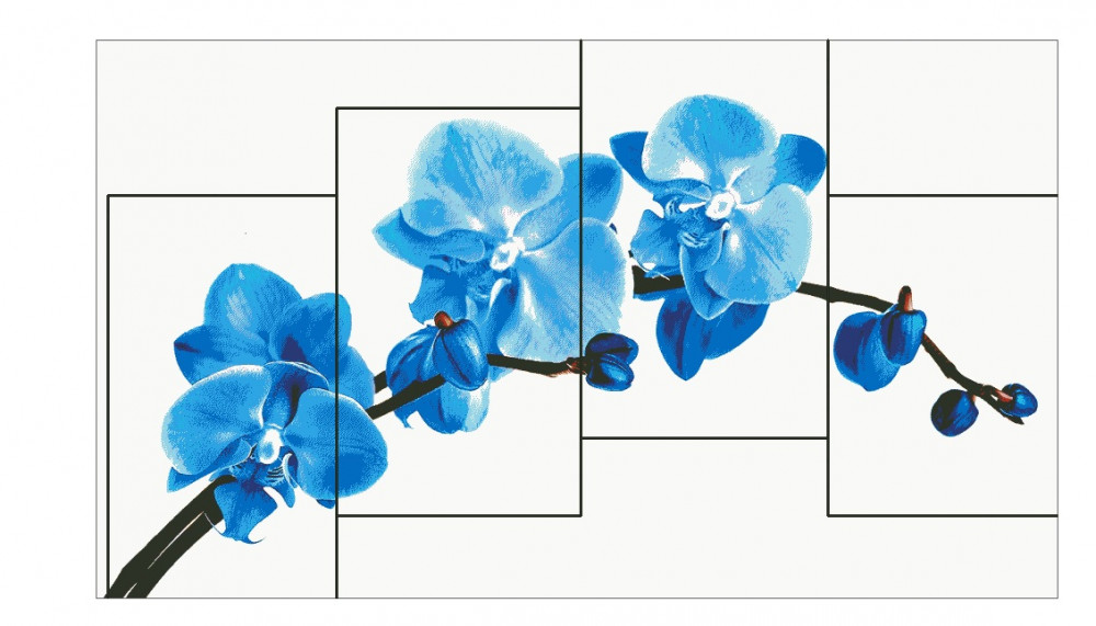Черновик орхидей.jpg