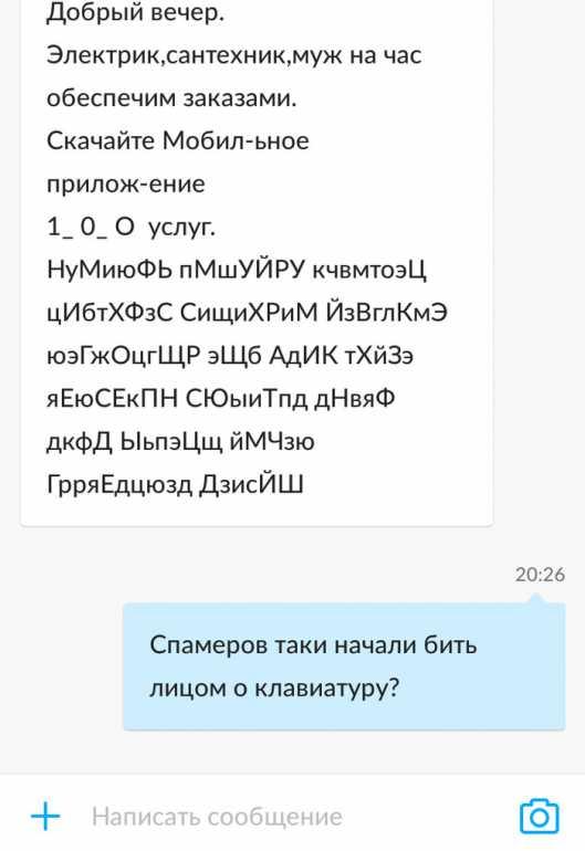 154964530217751182.jpg